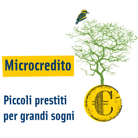 Microcredito PMI 2015